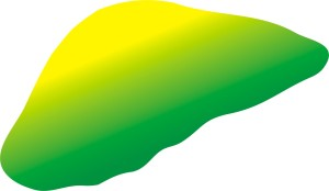 The new liver love logo in yellow-green